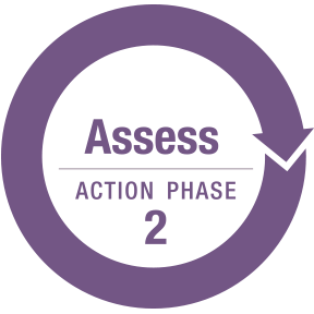 Assess Action Phase 2